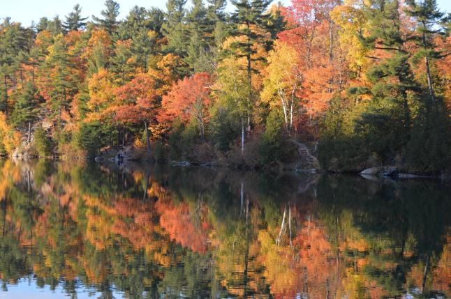 Autumn on Pink Lake