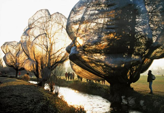 Christo, Wrapped Trees, Switzerland, 1998